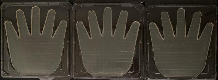 hands after sanitizing